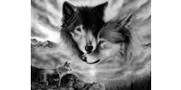Logo von Wolf-Coaching