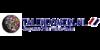 Logo van Talendomein.nl