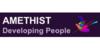 Logo van AMETHIST Developing People