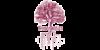 Logo van Ynnergetics