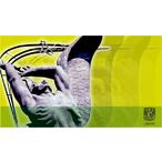 Thumbnail 20130218.logo.curso.pensamiento.cientfico.amarillo