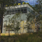 Thumbnail binnentuin opleiding tuinarchitect ontwerpacademie