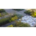 Thumbnail ontwerpen voor tuinen ontwerpacademie